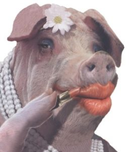 pig-with-lippie